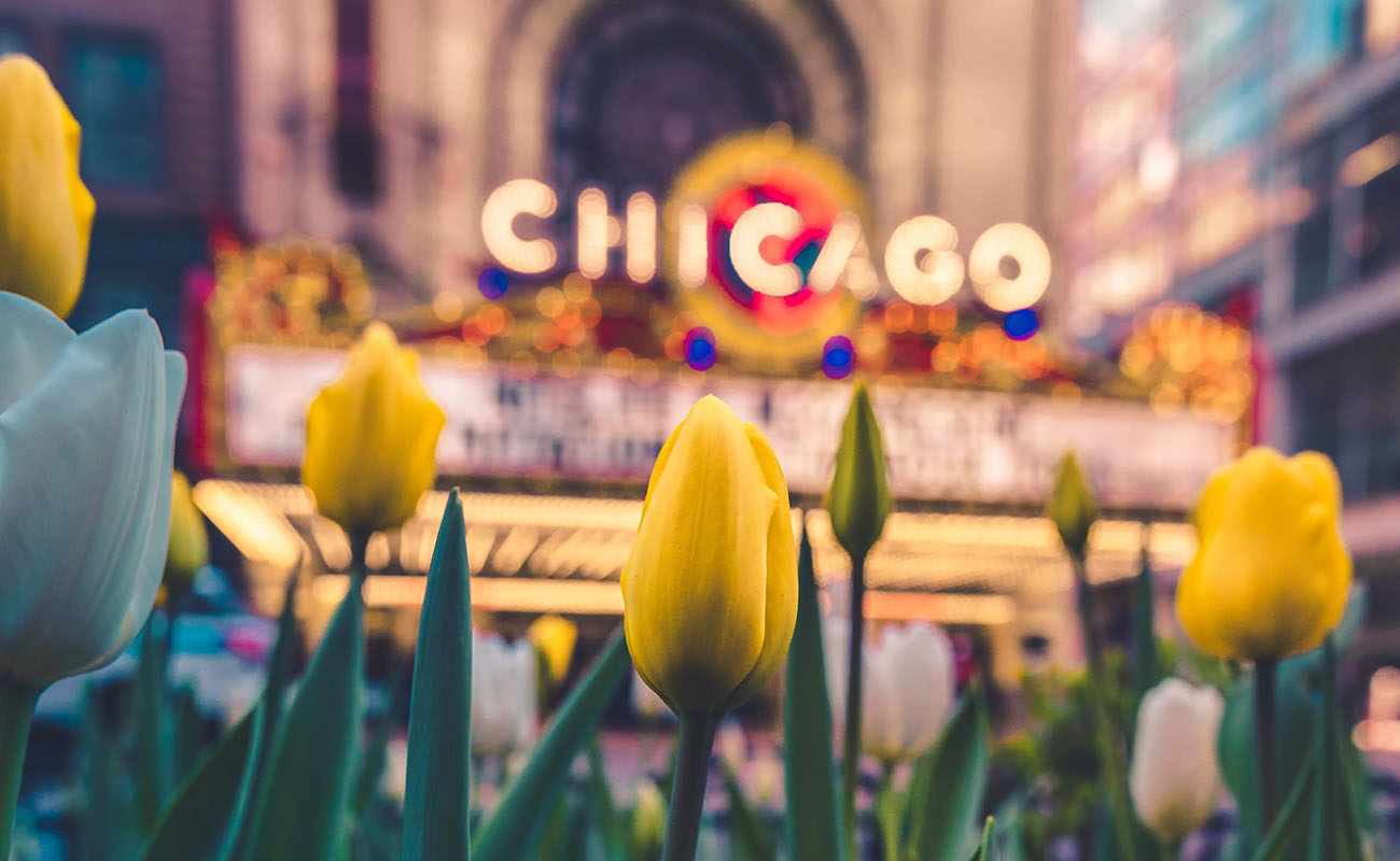 The Ultimate Chicago Summer Bucket List