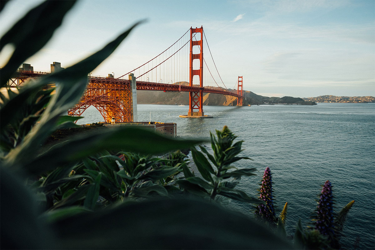 Things You Need To See While You're In San Francisco